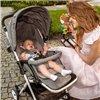 Дитяча прогулянкова коляска Lionelo Lea сіра