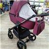 Дитяча коляска 2 в 1 Adamex Reggio Y20