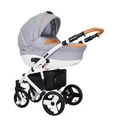 Дитяча коляска 2 в 1 Coletto Florino 06