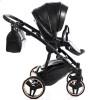 Дитяча коляска 2 в 1 Junama Thermo 01 Jet Black