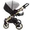 Дитяча коляска 2 в 1 Adamex Diego DW-500